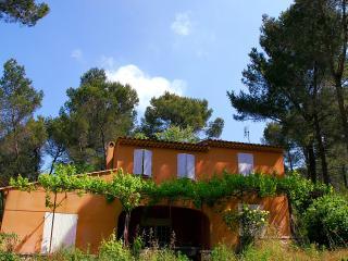 Villa Aurelia - Tarascon vacation rentals