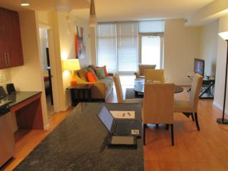 Lux Friendship Heights 2BR, balcony - Chevy Chase vacation rentals