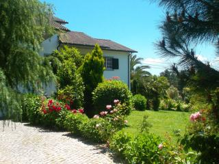 Bright 3 bedroom Sao Pedro do Sul Cottage with Deck - Sao Pedro do Sul vacation rentals