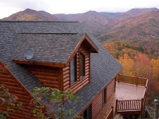 """Over The Edge"" *Luxury Log Cabin & Amazing Views* - Dillsboro vacation rentals"