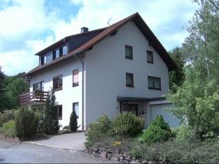 Nice Condo with Satellite Or Cable TV and Outdoor Dining Area - Lichtenfels vacation rentals