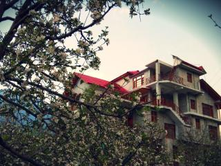 2 bedroom Condo with Internet Access in Manali - Manali vacation rentals