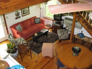 Blue Water Lodge and Studio, Beaver Lake Front Cabin, Boat Dock, Large Decks - Eureka Springs vacation rentals