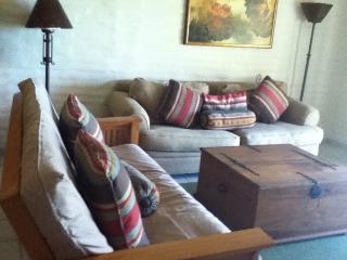 2 bedroom Apartment with Internet Access in San Carlos - San Carlos vacation rentals