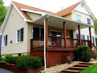 SEASONAL or SHORT TERM OFF SEASON - ELLICOTTVILLE - Ellicottville vacation rentals