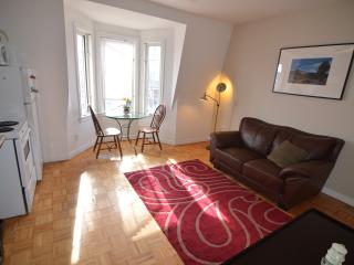 Charming and quaint two bedroom apt - Toronto vacation rentals