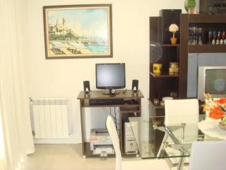 1 bedroom Condo with Internet Access in Mar del Plata - Mar del Plata vacation rentals