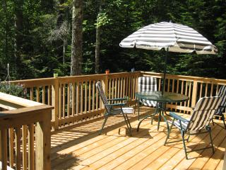 2 bedroom Cabin with Deck in Greenville - Greenville vacation rentals