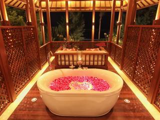 Puri Kamadewa - Anapuri Villas - Ketewel vacation rentals