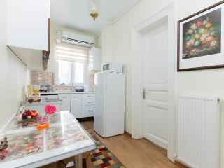 historical central apartment - Istanbul vacation rentals