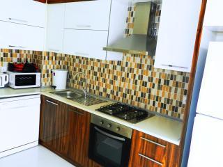 2 bedroom Condo with Internet Access in Antalya - Antalya vacation rentals