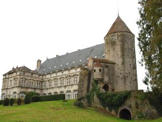 B&B - Chambres d'hote - Le Chateau de Frasne - Gy vacation rentals