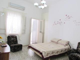 New amazing appartment in Haifa - Haifa vacation rentals