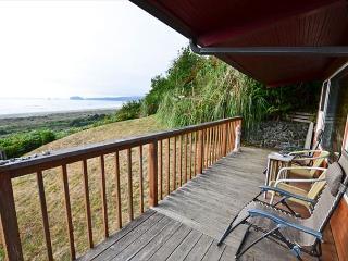 Clam Beach House 3 bedrooms, 2 ba, ocean and beach view, walk to huge beach! - McKinleyville vacation rentals
