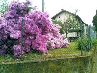 Camera Tripla più nel B&B a 2 km dal Lago Maggiore - Brebbia vacation rentals