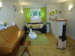 Nice Condo with Internet Access and Central Heating - Onex vacation rentals