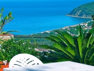 Villa Alberto. Apt Basilico - Castellabate vacation rentals