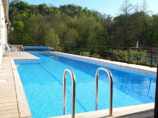Maison Villa 8 pers. Piscine Jacuzzi Rivière - Saint-Maixent-l'Ecole vacation rentals