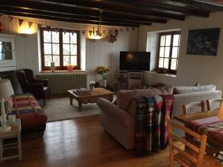 Evian 3 bedroom ski apartment unsurpassed views - Évian-les-Bains vacation rentals
