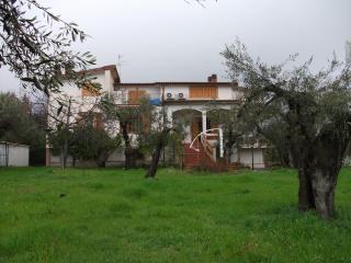 casa di campagna vicino mare Baia Domizia - Teano vacation rentals