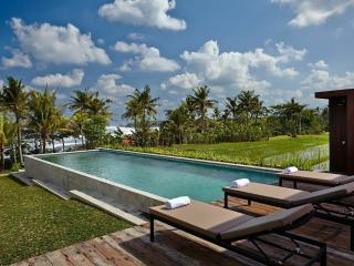 Beautiful Villa with Internet Access and A/C - Mengwi vacation rentals