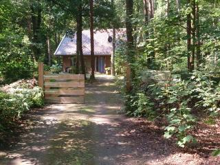 Nice Bed and Breakfast with Internet Access and Wireless Internet - Norg vacation rentals