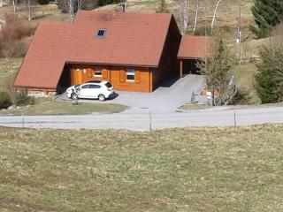 Nice Ski chalet with Internet Access and Dishwasher - Gerardmer vacation rentals