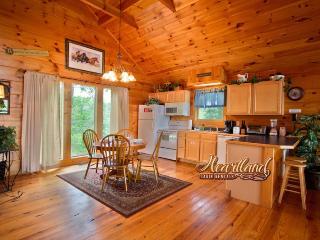 CHERISHED MEMORIES - Sevierville vacation rentals