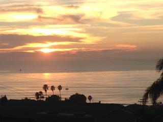 La Jolla walk to town and to Windansea beach. - La Jolla vacation rentals