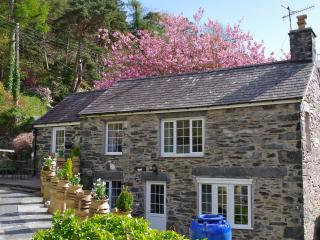 Tyn y Fron 4* self catering cottage - Betws-y-Coed vacation rentals