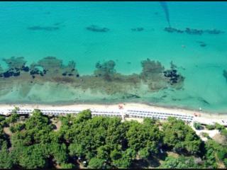 Golfo di Follonica Parco della sterpaia - Campiglia Marittima vacation rentals