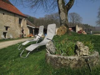1 bedroom Condo with Internet Access in Besançon - Besançon vacation rentals
