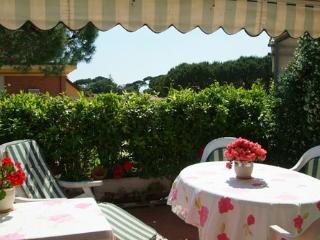 Nice 1 bedroom Penthouse in Forte Dei Marmi - Forte Dei Marmi vacation rentals