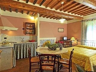 Monolocale tra olivi e vigne a Montecarlo - Montecarlo vacation rentals