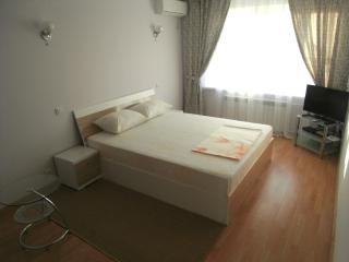 Perfect Condo with Internet Access and Television - Chisinau vacation rentals