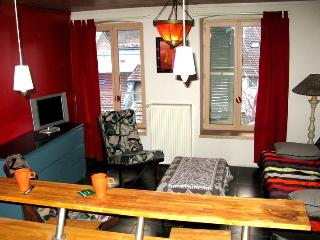 Nice Condo with Internet Access and Television - Nantua vacation rentals