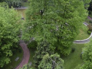 ELEGANT, large150mq,close SUBWAY, WIFI, smart cost - Milan vacation rentals