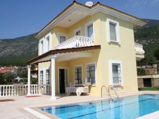 Dilek Villa - Oludeniz vacation rentals