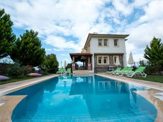 DİSCOUNT!! Perfect Holiday Villa in Ovacık - Ovacik vacation rentals