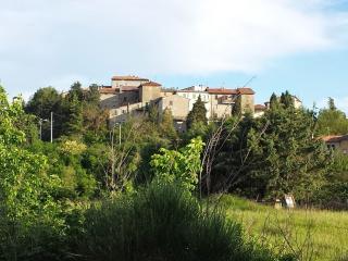 1 bedroom House with Deck in Fratticiola Selvatica - Fratticiola Selvatica vacation rentals