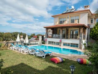 DİSCOUNT!! Private Pool Holiday Home for Rent - Ovacik vacation rentals