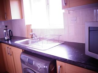 Nice Condo with Internet Access and A/C - London vacation rentals