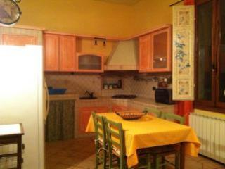 Tuscany rental House close to Florence , parking - Castelfiorentino vacation rentals