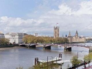 LONDON APARTMENT RIVERSIDE OPP WESTMINISTER - London vacation rentals
