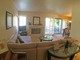 Del Mar / Solana Beach Townhome close to beach - Solana Beach vacation rentals