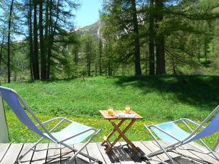 Foux D'Allos Appt 4/6pers terrasse sud jardin parking belle vue Parc MERCANTOUR - Allos vacation rentals