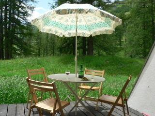 Foux DAllos Appt 4/6p terrasse Parc du Mercantour - Allos vacation rentals