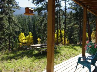 The Refuge - Allenspark vacation rentals