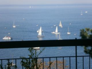 zona Faro della Vittoria, fronte mare,  4* - Trieste vacation rentals