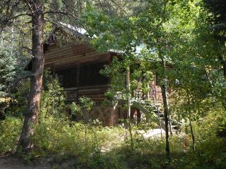 Perfect Cabin with Internet Access and DVD Player - Allenspark vacation rentals